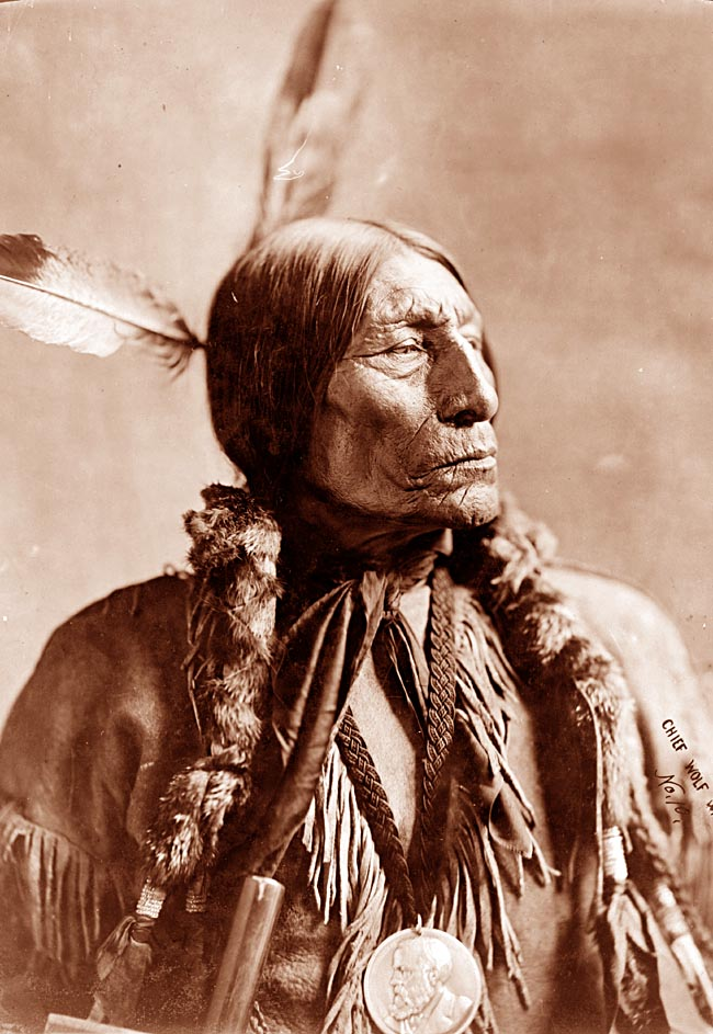 indian chief and wolf - photo #28