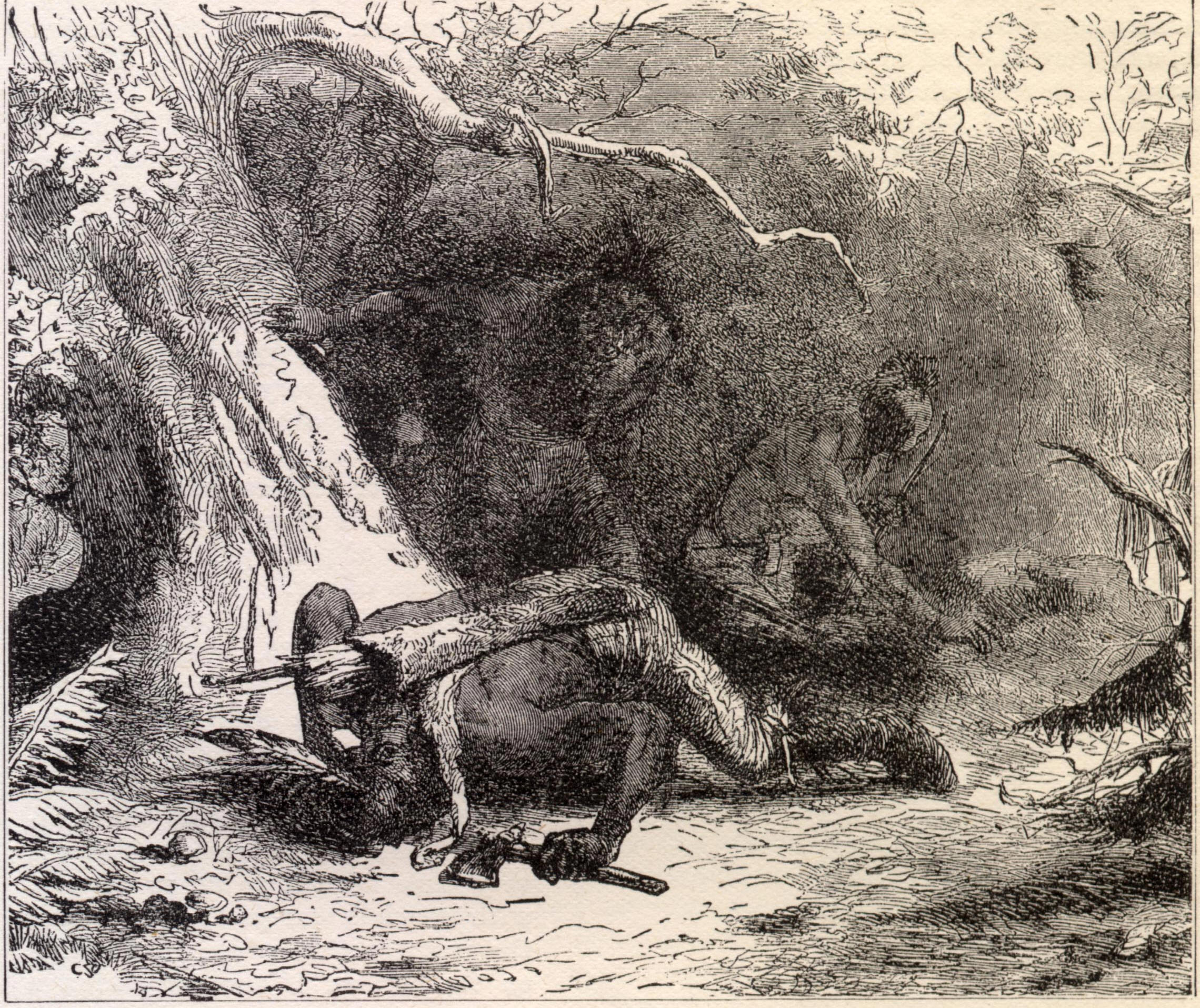 indian wars Get an answer for 'what were the causes and effects of the indian wars between 1860 and 1890' and find homework help for other history questions at enotes.
